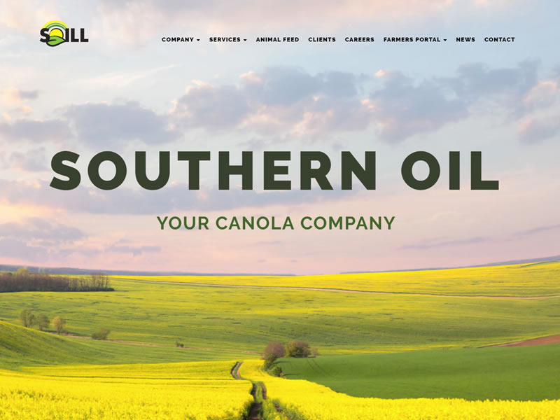 lightlyfunky™ Portfolio - Southern Oil (Pty) Ltd
